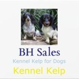 BH Sales Kennel Kelp Introduction to your Heart Brain Coherence