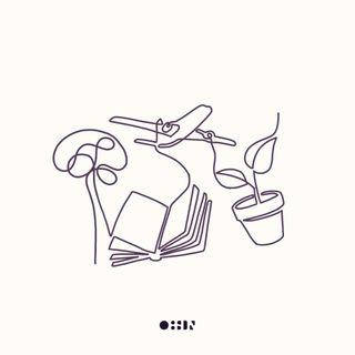 008: Intellectual Wellness -  My Curiosity