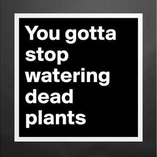 Stop Watering Dead Plants
