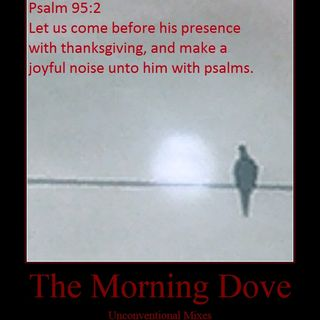The Morning Dove (Previews)