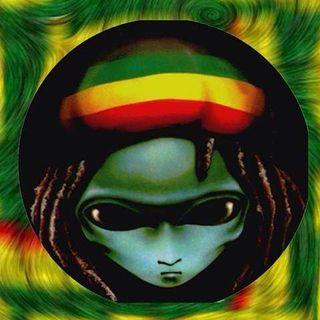 New World Of Reggae / Urban : Re-Twist : Live Playback Download V8UK.