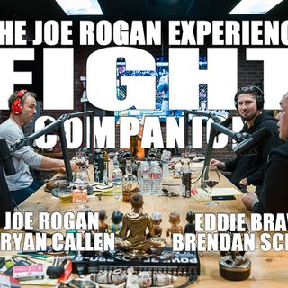 Fight Companion - February 17, 2019