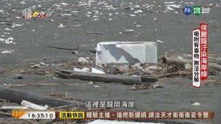 16:58 【台語新聞】保麗龍養蚵釀汙染 殘害海洋生態! ( 2019-06-28 )