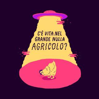 """Nuovo Podcast: """"C'è vita nel Grande Nulla Agricolo?"""" (TRAILER)"""