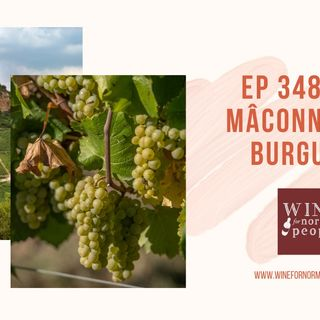Ep 348: The Mâconnais of Burgundy
