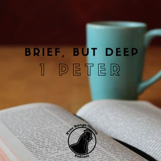Episode 247 - Don't Lose Sight Of God - 1 Peter 2