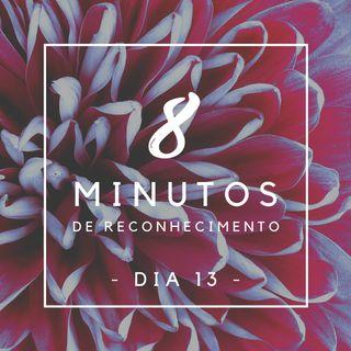 8 Minutos de Reconhecimento - Dia 13