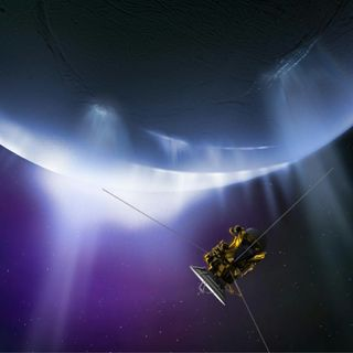 The Case for a Return to Enceladus