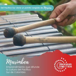 Marimbea: del Pacífico viene un potrillo cargado de música