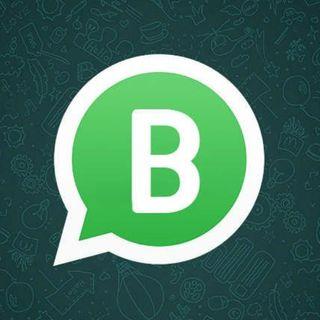 Whatsapp profesional