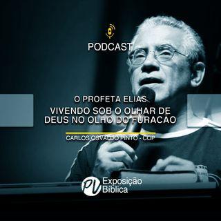 O Profeta Elias - Vivendo sob o olhar de Deus no olho do furacão - Carlos Osvaldo Pinto (COP)
