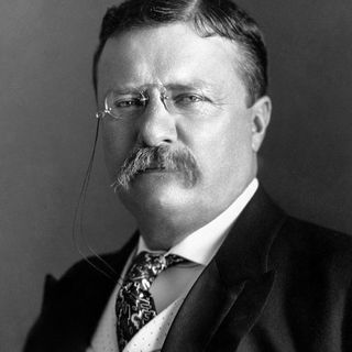 """""""Professionalism in Sports by Teddy Roosevelt"""""""