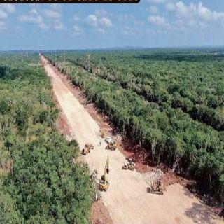 Fuerzas armadas operarán Tren Maya
