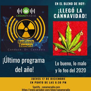 Radiosis Sonora Numero 20