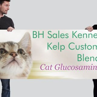 BH Sales Kennel Kelp Holistic Healing Hour-CTFO Why Now!