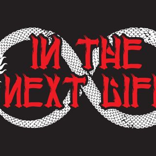 IN THE NEXT LIFE - DEVIL w ANGEL  WINGS