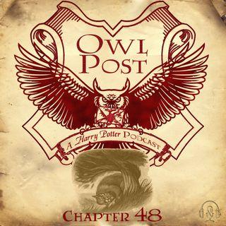 Chapter 048: Gyffindor versus Ravenclaw