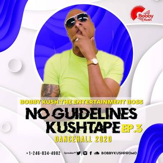 Episode 3 Bobby Kush Presents No Guidelines Dancehall 2020 [sponsor By Apache Cd Dvd}