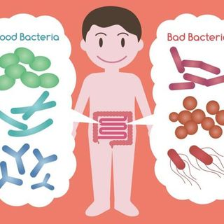 Gut Microbiome Made Simple