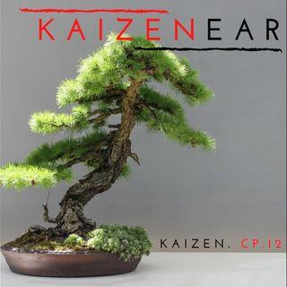 #12 kaizen