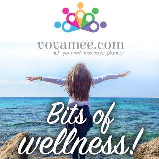 Bits of Wellness