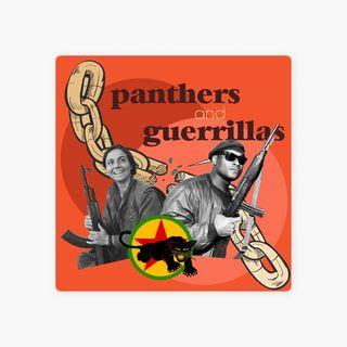 Phanters and Guerrillas - Divulgação