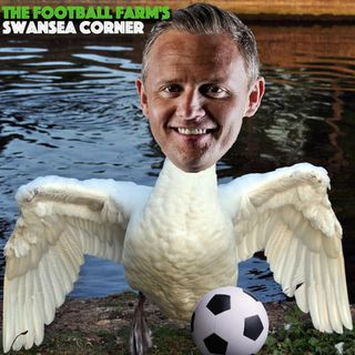 The Football Farm's Swansea Corner