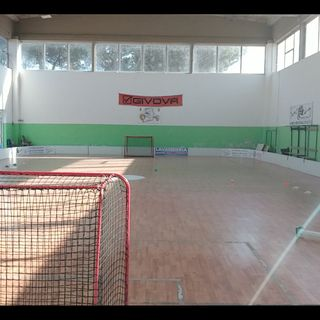 Floorballmania . A goalkeeper life.