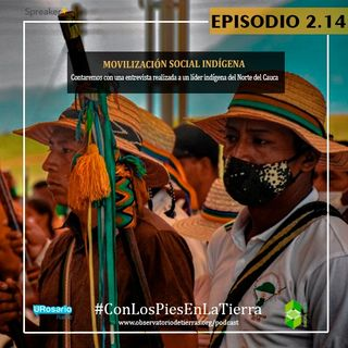 Movilización social indígena