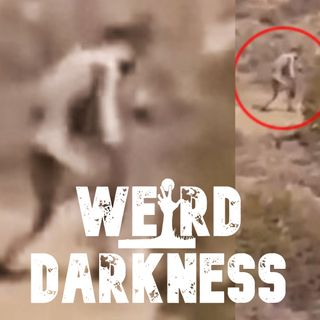 """What Are The Desert Humanoids?""  and 4 More Dark But True Stories! #WeirdDarkness"