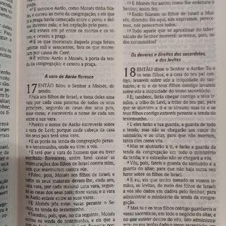 Livro de Moises, Numeros 18