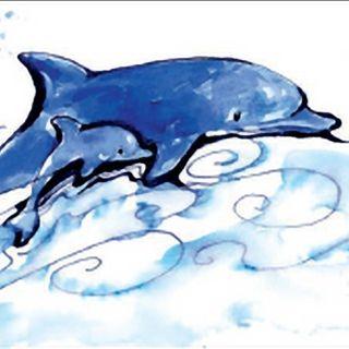 U Piccin, il piccolo delfino di Camogli