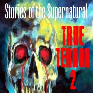 True Terror 2 | Interview with Shawn Graham | Podcast