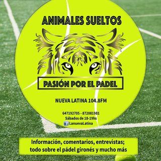 ANIMALES SUELTOS - PASIÓN POR EL PADEL (11)