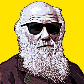 Te lo do io Darwin!
