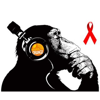 02/12/19 La scimmia - Giornata mondiale contro AIDS (By Angelo)