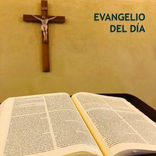 Evangelio - 06 julio - lunes