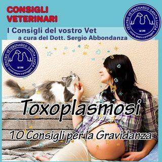 10 - Toxoplasmosi: 10 consigli per prevenire l'infezione di toxoplasmosi nella donna in gravidanza.