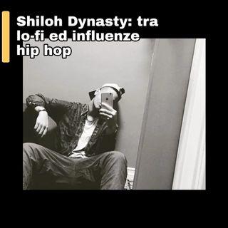 Shiloh Dynasty: tra lo-fi ed influenze hip hop