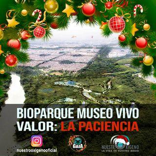 NUESTRO OXÍGENO  Bioparque museo vivo y valor la pacienca
