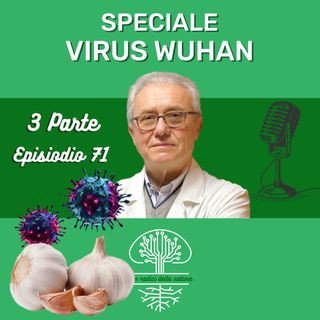 Alimenti utili per combattere i Coronavirus