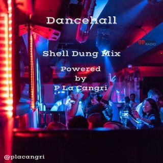 Dancehall Shell Dung Mix