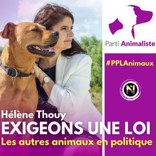 Helene Thouy, les autres animaux en politique