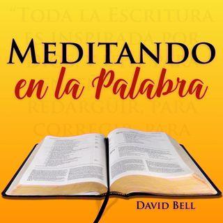 MelP_136-Salmo_90_12