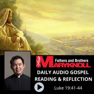 Luke 19:41-44, Daily Gospel Reading and Reflection