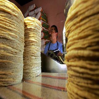 Descartan aumento al precio de tortilla