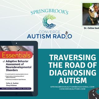 Traversing the Road of Diagnosing Autism with Dr. Celine Saulnier