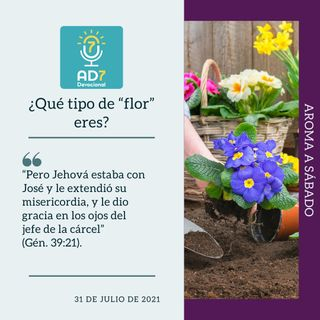 """31 de julio - ¿Qué tipo de """"flor"""" eres? - Devocional de Jóvenes - Etiquetas Para Reflexionar"""