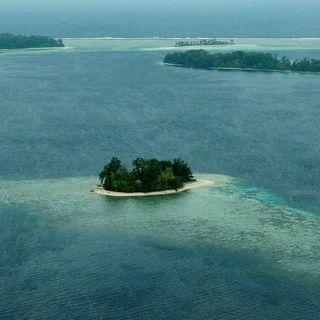 Endangered: Mamma, mi son perso l'isola