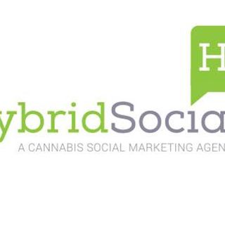 Amy Donohue from Get Hybrid Social on How a Professional Social Media Consultant Can Improve Your Online Presence